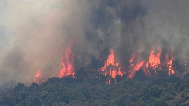 Incendio del pasado mes de julio en la provincia de Toledo
