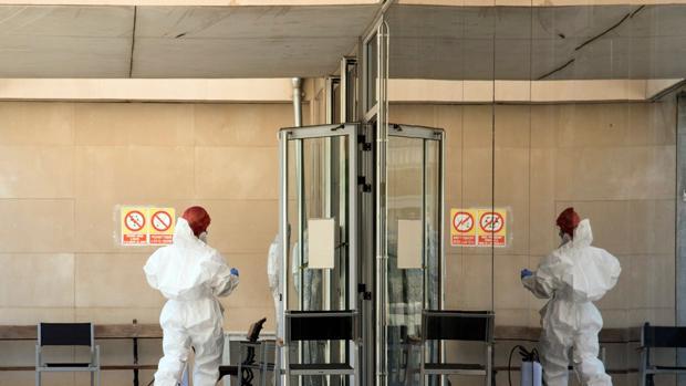 La OMS advierte de un posible incremento de la pandemia por la vuelta al  cole y la temporada de gripe