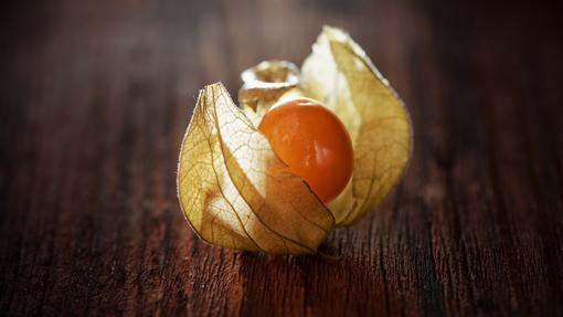 Uchuva o Baya Inca, una joya nutricional