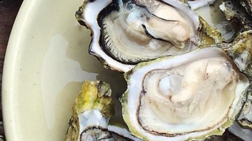 Las ostras contienen yodo, proteínas, minerales, vitaminas y omega-3