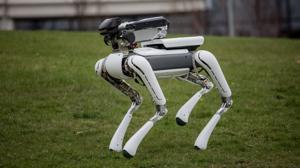 Una ficción televisiva plantea la posibilidad de aplicar la IA a las mascotas