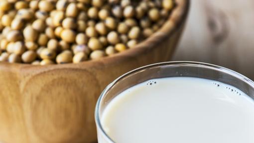 Las proteínas constituyen alrededor del 40% de las semillas de soja