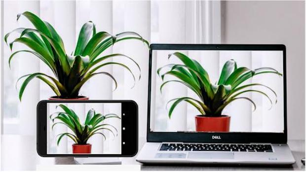 Cómo usar la cámara de tu iPhone y móvil Android como webcam