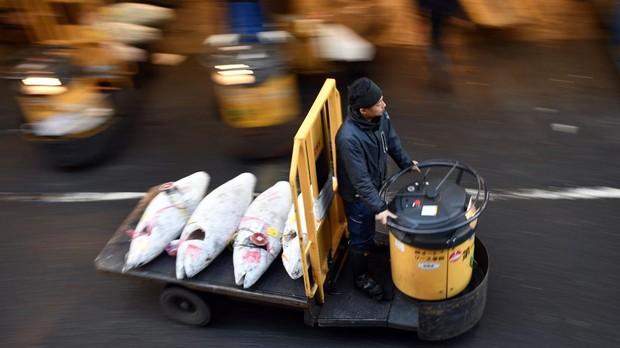 Un hombre transporta atunes congelados para una subasta el 2 de marzo de 2018 en el mercado de pescados Tsukiji